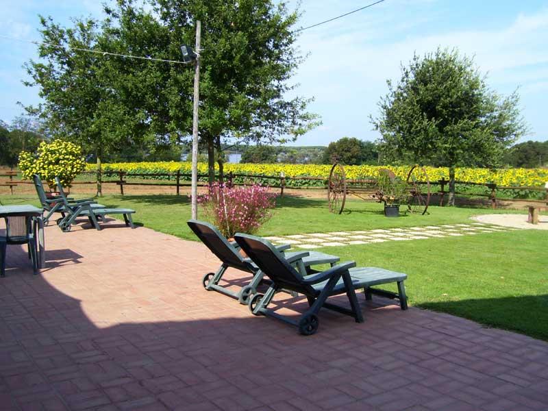 relax vicino ristorante con vista lago e girasole