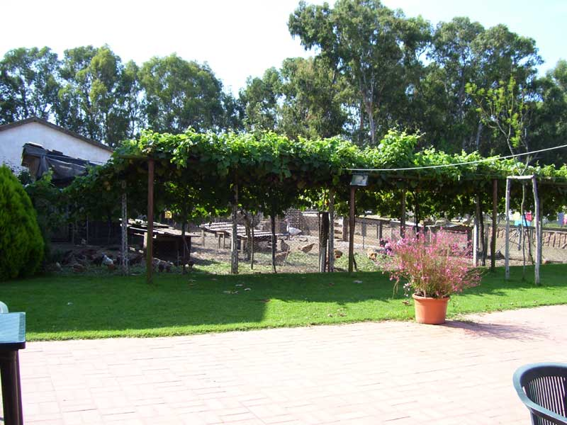 vista giardino verso pizzolo zoo